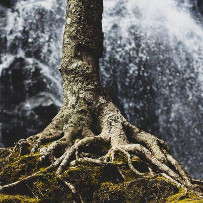 Hidden Stream of Living Water