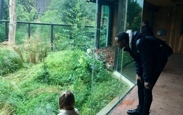 Joy and excitement at London Zoo